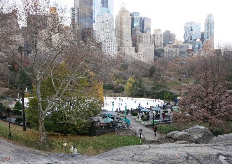 Central Park New York Winter