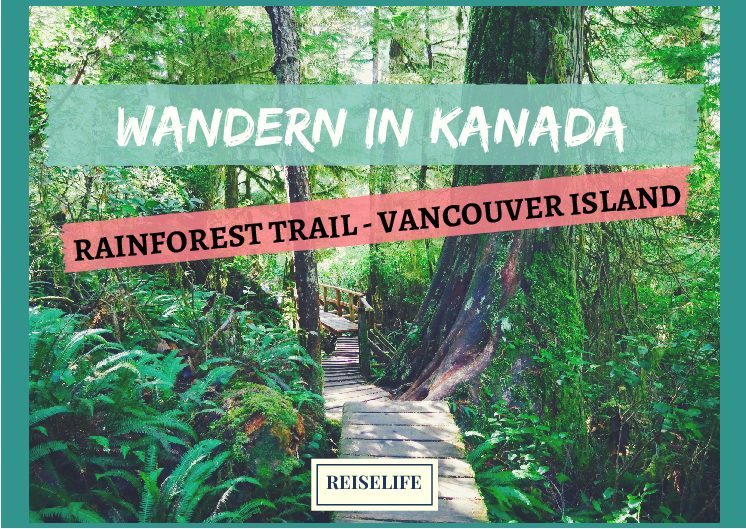 Vancouver Island Rainforest Trail – Wandern in Kanada!